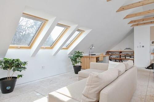 Artist's loft studio conversion with skylights