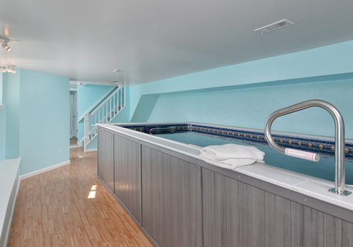 Finished Basement Conversion with Endless Pool & Full Bath
