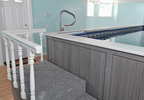 Basement spa conversion with an endless pool with full bath